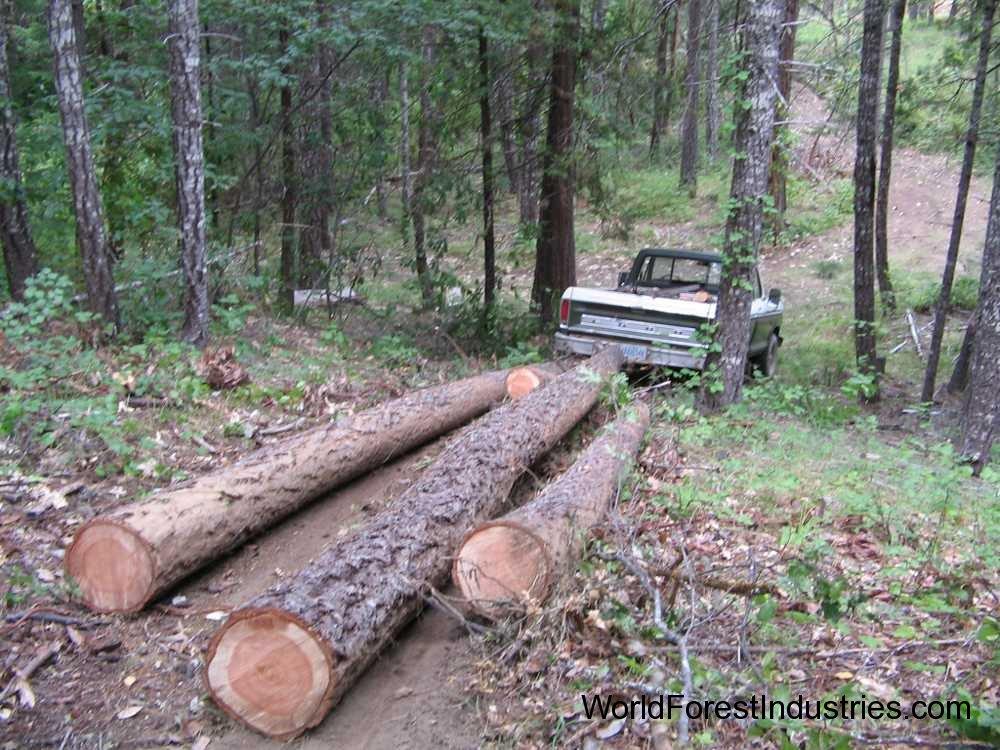 Pickup logging