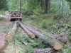 Pickup Truck Logging