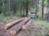 Skidding Logs With a Pickup