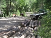 Logs and Pickup Trucks