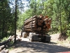Loaded Log Truck