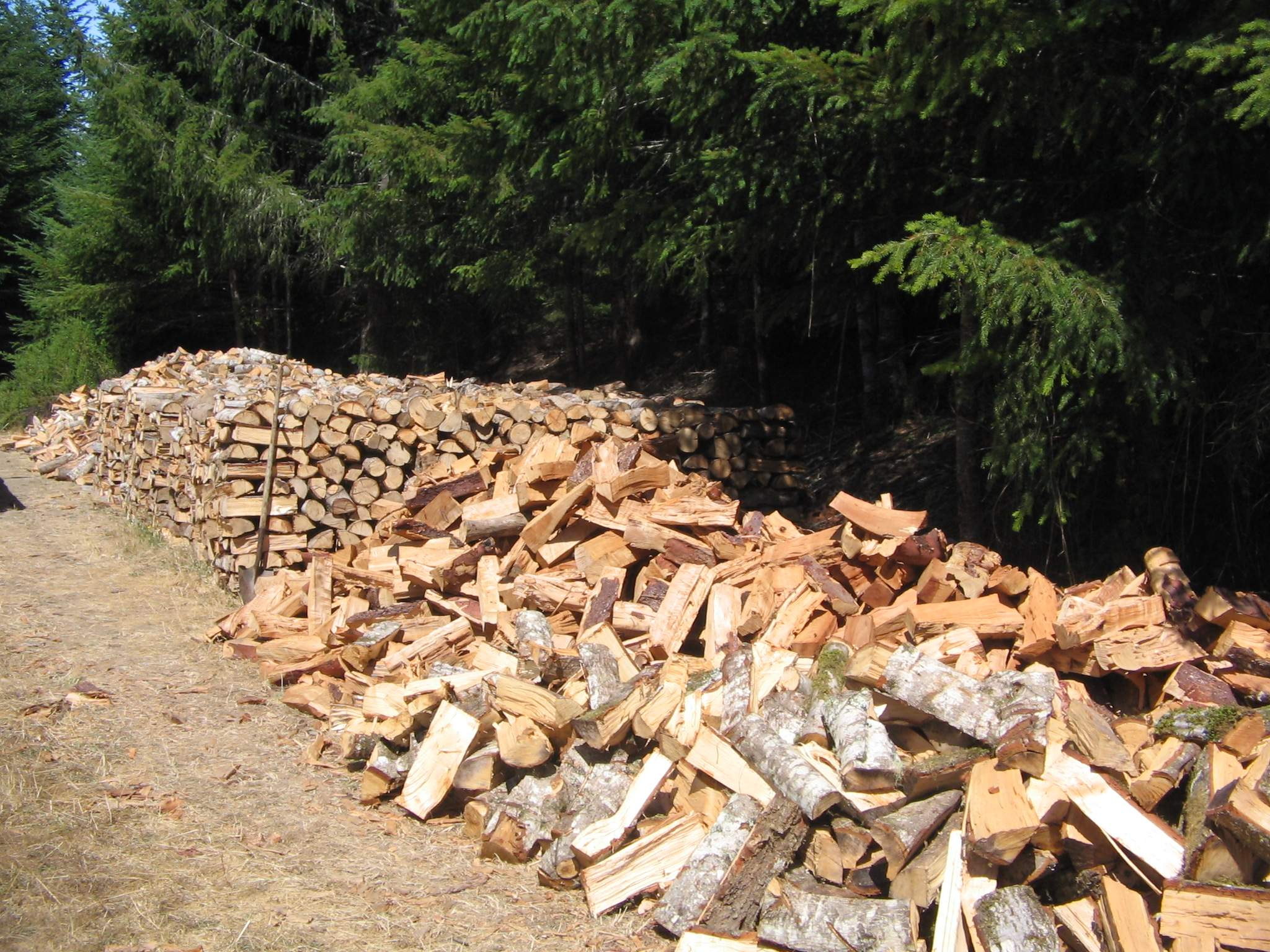 Firewood as a practical wood biofuel and energy source