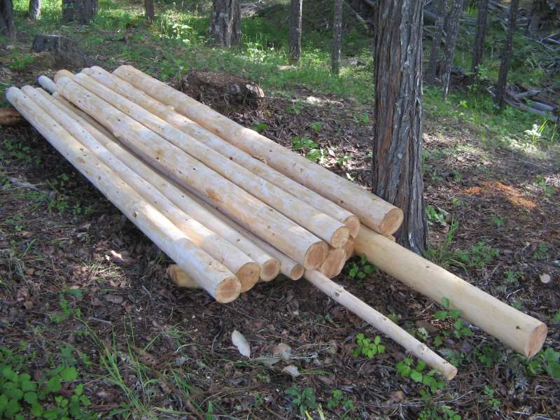Peeled Poles – World Forest Industries
