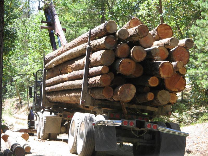 Logs Self Loader